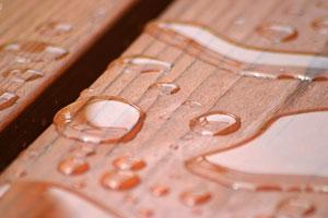 raindrops on a redwood deck